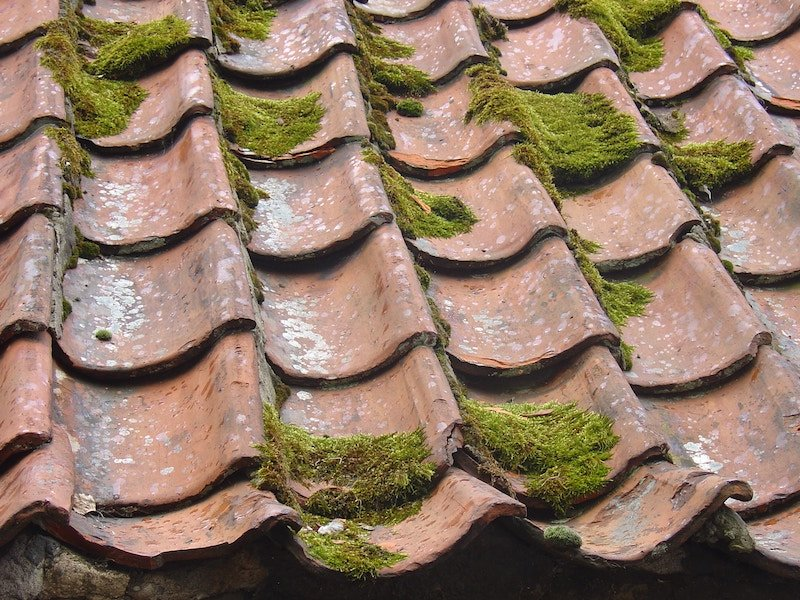 Clay Tile Roofs in 2020 8