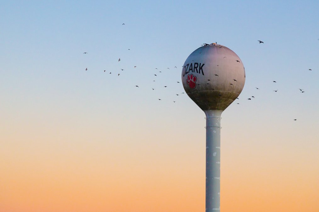 Ozark water tower in Ozark, MO