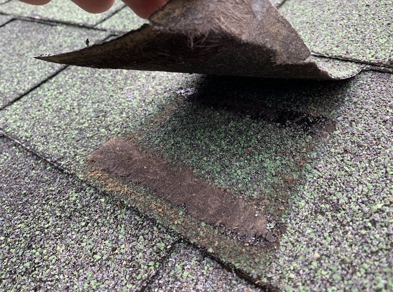 lifted shingle tab with shingle backing stuck to mastic