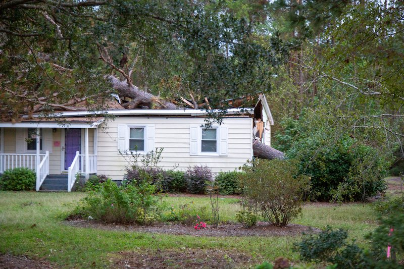 tree fell on a house